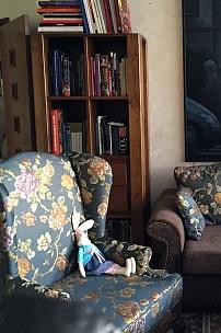 Частный интерьер, мебель в жаккарде Roissy