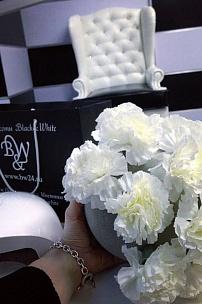"""Студия красоты """"Black & White"""", Московская область, Истринский район КП Опушкино, д.157"""