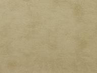 Колеж (Kolej) - Колеж 120 крем, коллекция Колеж (Kolej)